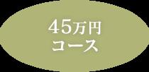 45万円コース