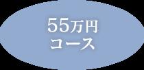 55万円コース